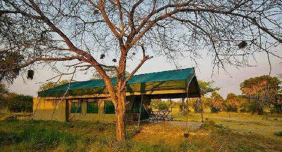 Lake Manze Tented Camp, Selous Game Reserve: Lake Manze - Tent