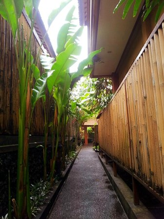 Ubud Lestari Bungalows:                   OUTSIDE