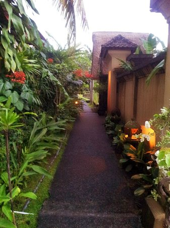 Ubud Lestari Bungalows :                   OUTSIDE