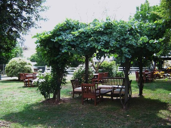 Merrijig Motor Inn Resort:                   exterior