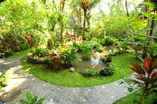 Gustis Garden Bungalows:                   view from the terrace