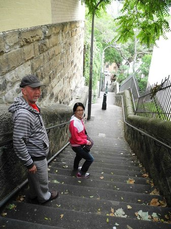 Sydney Urban Adventures:                   Descending the Butler Stairs from Potts Point