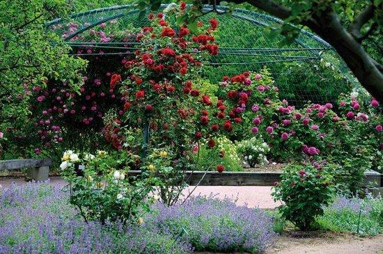 Jardin aux Plantes Parfumees la Bouichere