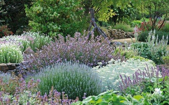 Jardin aux Plantes Parfumées la Bouichère照片