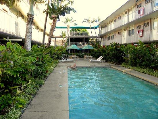 Pacific Marina Inn Airport:                   swimming pool