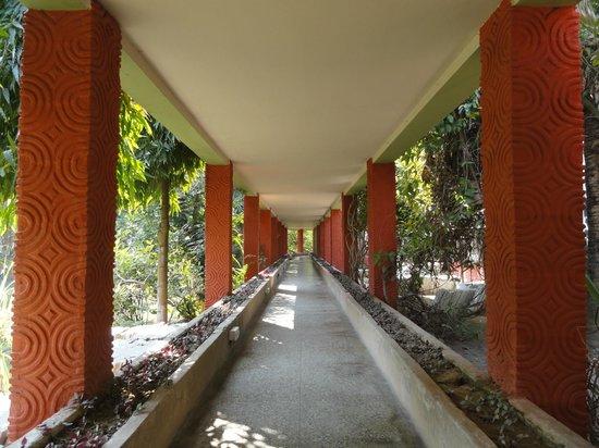 Mark & Meadows:                   passage