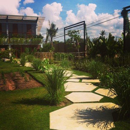 Komune Resort, Keramas Beach Bali:                   Veggie patch