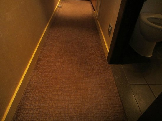 Crowne Plaza Hotel Reading:                   paddle in the hall