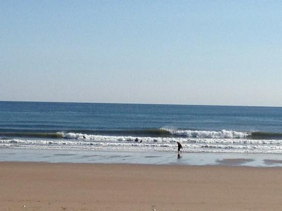 Long Sands Beach :                   Longsands surf