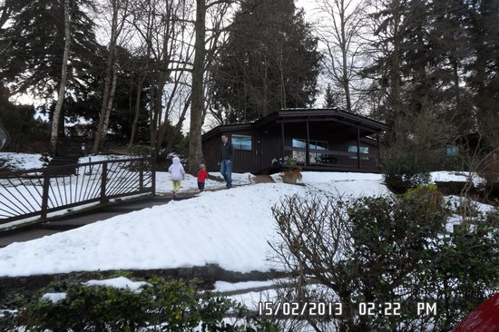 Altamount Chalets:                   cabins                 