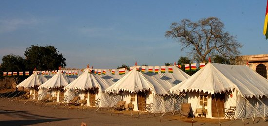 Royal Jodhpur Camp Nagaur Photo