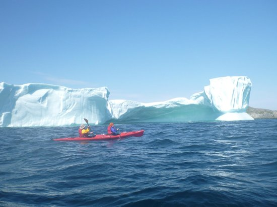 Quirpon Lighthouse Inn:                                     Massive Iceberg
