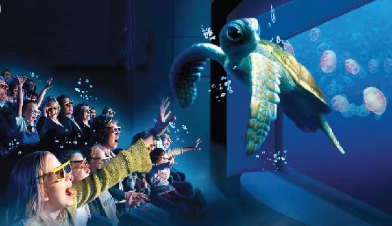Interactive Rockpool experience - Foto de National Sea Life Centre ...