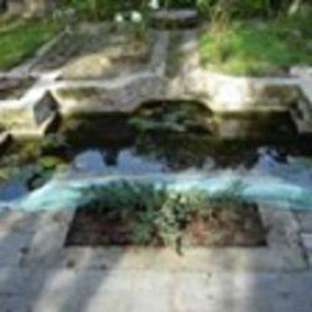 Chambres d'Hotes Manoir de Montecler : la pièce d'eau...