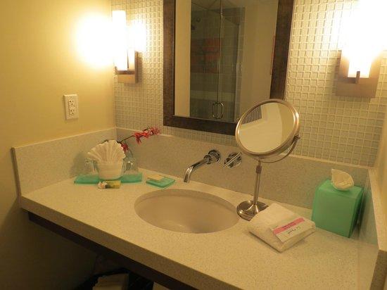 Orchid Key Inn:                   baño