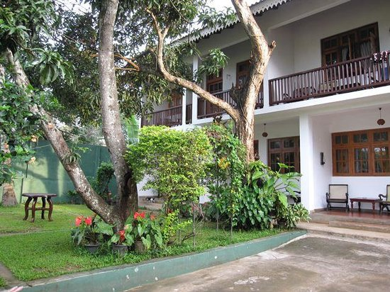 Little Paradise Tourist Guest House and Holiday Home Anuradhapura:                   the garden