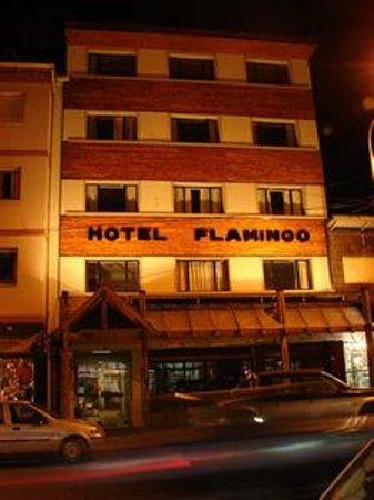 Hotel Flamingo Photo