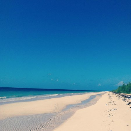 Ocean Pearl Bonefish Resort:                   Deserted Beach with Wifi