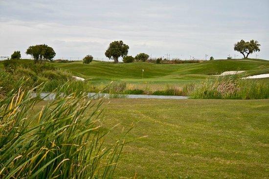 Golf El Puerto: Fairway hoyo 7