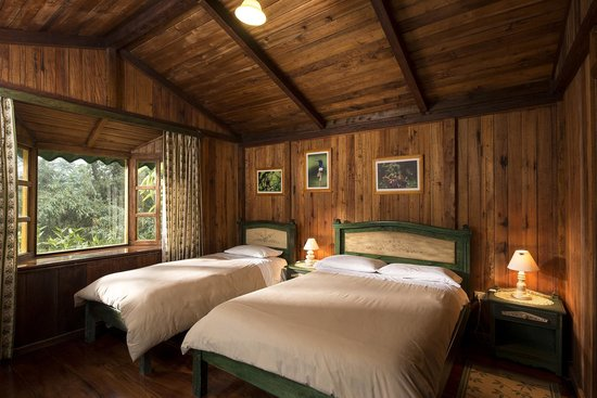 Sachatamia Lodge: Cabins of the Ferns