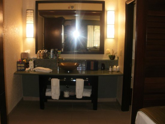 Doubletree by Hilton Orlando at SeaWorld:                   hotel room bathroom