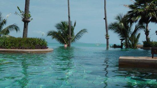 Anantara Bophut Koh Samui Resort:                   infiniti pool                 