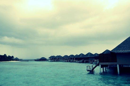 อดารัน เพรสทีจ วาดู รีสอร์ท:                   On water villas