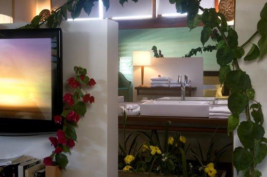 Hotel Vila Selvagem: Bahneiro