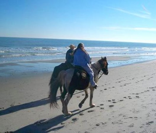Horseback Riding of Myrtle Beach: Xcailber an Kid
