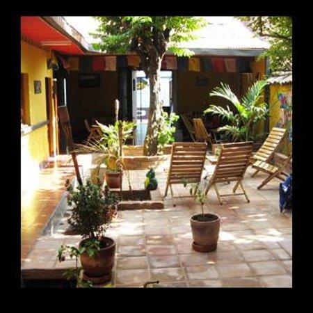 Hostal La Tortuga Booluda: Common area