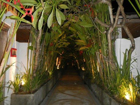 Rama Residence Petitenget:                                     walkway to the rooms