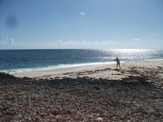 Lover's Beach 사진