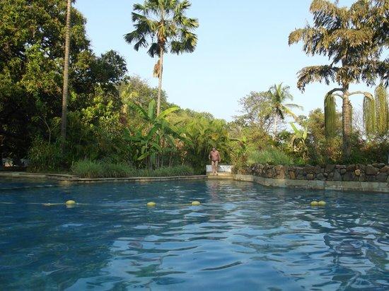 Hotel Laguna Anjuna:                   бассейн