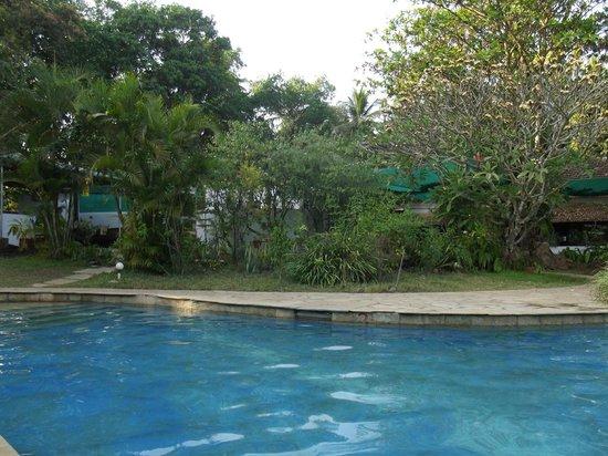 Laguna Anjuna:                   бассейн