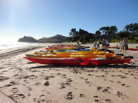 Cathedral Cove Kayak Tours:                   Cathedral Cove Kayaking Tours