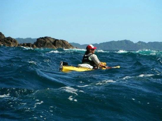 Cathedral Cove Kayak Tours:                   Our Guide for Cathedral Cove Kayaking Tours
