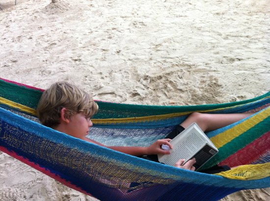Nirvana on the Beach:                   book in the hammock