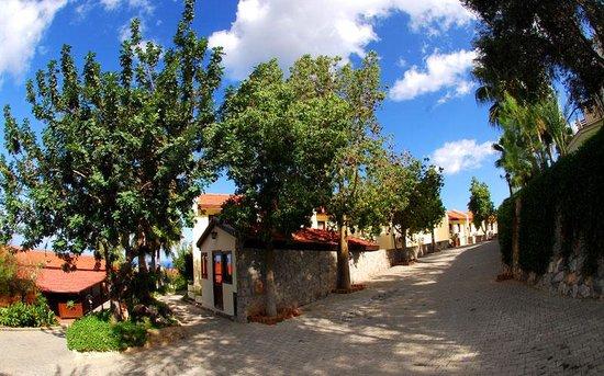 Bellapais Monastery Village照片