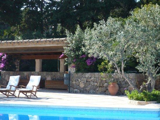 Hotel Sa Pedrissa:                                     swimming pool