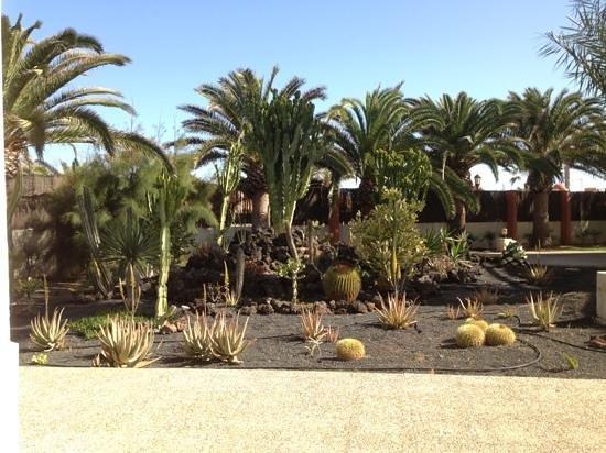 Suite Hotel Atlantis Fuerteventura Resort:                                     nice gardens
