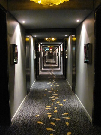 Protea Hotel Fire & Ice! by Marriott Johannesburg Melrose Arch:                   Dark corridor