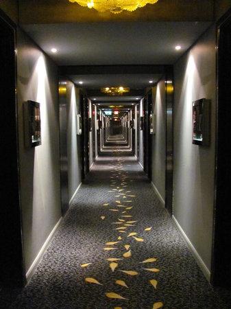 بروتيا هوتل فاير آند أيس ميلروسي آرك:                   Dark corridor                 
