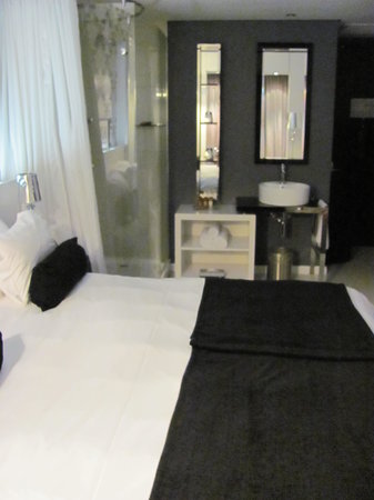 Protea Hotel Fire & Ice Johannesburg Melrose Arch:                   Bathroom mixed with Bedroom, no separation