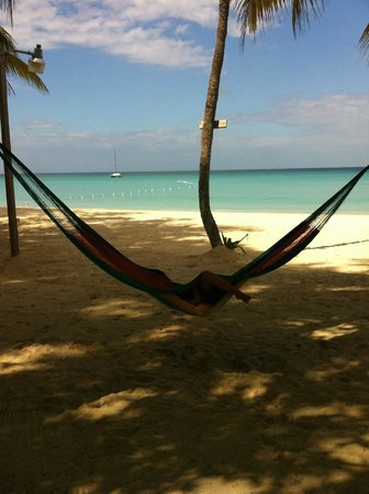 Nirvana on the Beach:                   nap in hammock