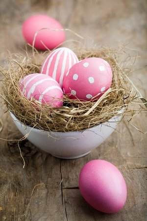 Zephyrus Boutique Accommodation: Enjoy Easter holidays at Zephyrus