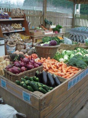 Ben's Organic Farm Shop and Cafe: Fruit & Veg galore