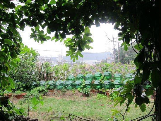 Yukisanchi:                   テラス席からの眺め
