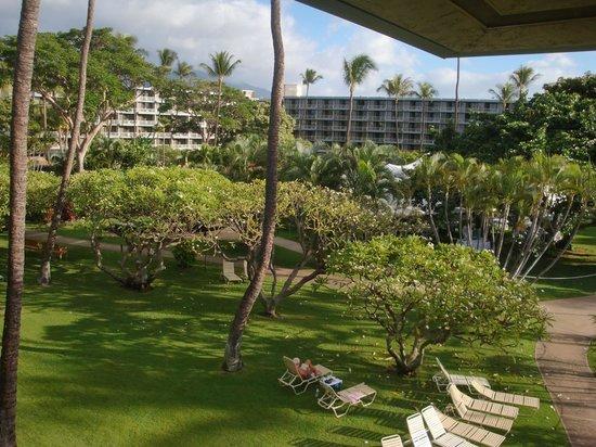 Kaanapali Beach Hotel:                   Garden