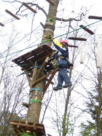 Camping Muellerwiese : Climbing garden, 800 meter from campsite Muellerwiese