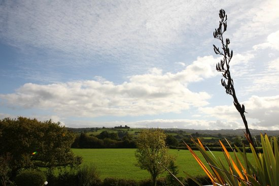The Plough Inn: View from hotel of Towy Valley (seen from all rooms)